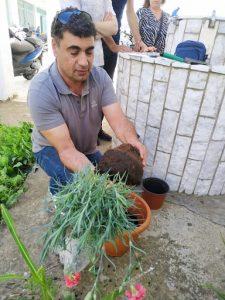 Καθαρισμός κήπου του σχολείου και φύτεμα